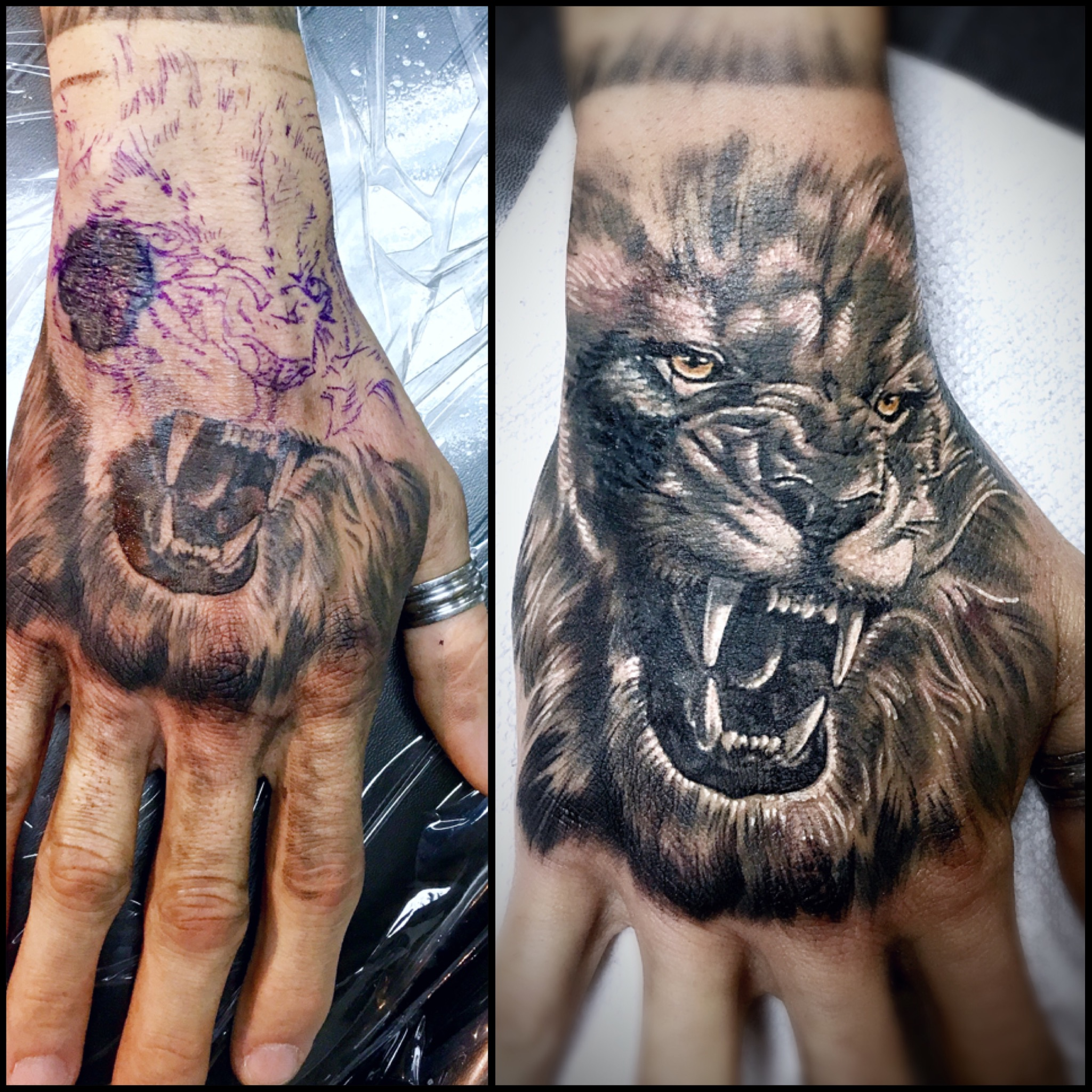 Leo Tattoos: Portfolio Categories
